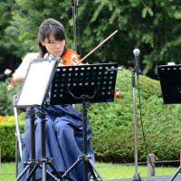 旧古河庭園、秋バラの音楽会・・2