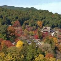 奈良大和路巡礼の旅