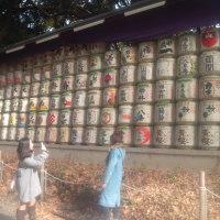 滞在型家庭菜園:献納された酒樽