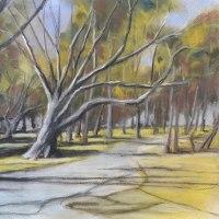 冬枯れの代々木公園(パステル)   F(6)