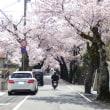 Let's 楽しむ春日和!!