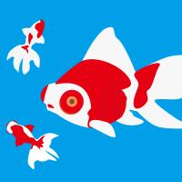金魚より集中できない現代人