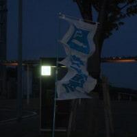 淡路島  7kgオーバー