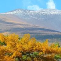 秋の信濃路・・・峰の茶屋から・・・浅間山