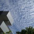 7月22日の空~うろこ雲~