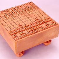 江戸時代の中将棋駒