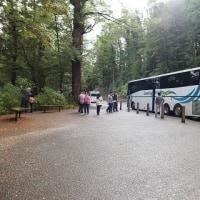 2012年4月クイーンズタウンからミルフォードサウンド バス旅 2