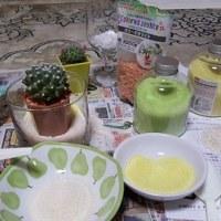 カラーサンドを使ってサボテン植えた