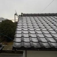 うっすらと積雪