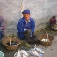 ★魚売りの老人~周庄(中国)
