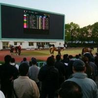 「その金ナイター競馬」、開幕。