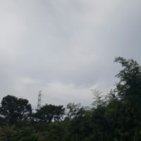 空を見れば。