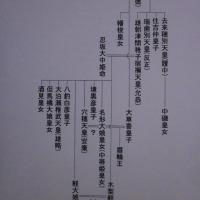 日本書紀中国人述作者説反駁 中蒂姫(なかしひめ)考 其の一