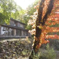 イタリア大使館別荘記念公園