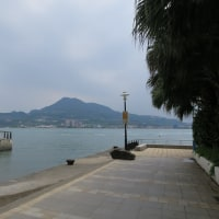 台北 in 2017(8)
