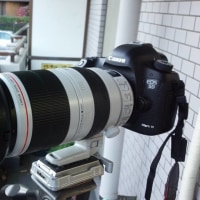EF100-400mm F4.5-5.6L IS II USM 新導入 舞台撮影もお任せください
