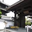 臼杵城跡観光