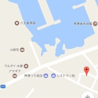 杉浦水産くさや加工体験1日目★旭コラボ企画vol.3