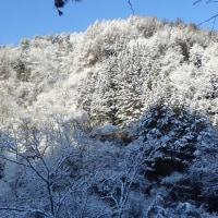 まるで冬景色!