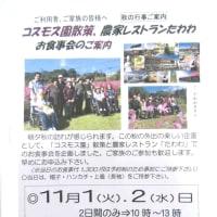 10月1日(土)晴れ 利用者9名 散歩1人・ペダル漕ぎ1人