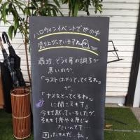 10/30(日)の黒板ボード☆ナス!