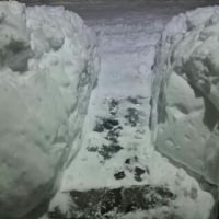 雪かき、カキカキ…………はぁ~