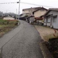 小学校裏の道