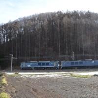 12月29日撮影 その4 西線貨物6883レと3084レより