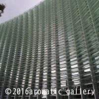 国立新美術館 『 ダリ展 』 ①