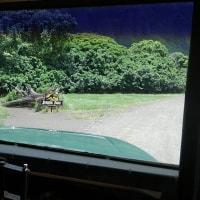 ハワイのジュラシックパークとゴジラのロケ地探訪