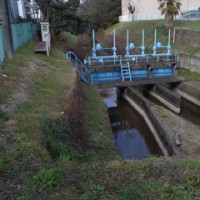 堀の分水堰a GR