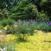 花と水と緑の七つ洞公園