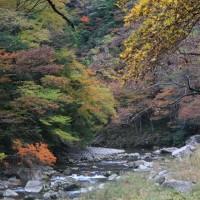 錦秋の渓谷2