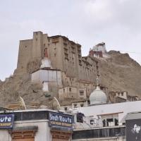 北インド・ラダック地方の自然と僧院-4 (レーの街観光 )