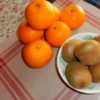 八朔とキウイフルーツ