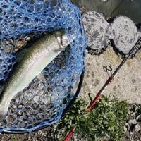 4月13日 Fish On 王禅寺
