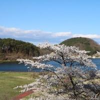 4/23 (日)その2 7年ぶりの風景