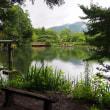 金鱗湖 天祖神社