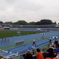 日清食品カップ・第33回 全国小学生陸上競技交流大会東京都予選