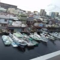 京都ミニ旅その7~帰りは高速バス昼便で
