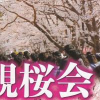 今年も観桜会・・・・高田城!