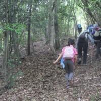 住吉山~高倉山へのハイキング
