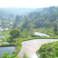 越後・・・頸城山地・・・日本一の美しすぎる・・・星峠の棚田・・・シリーズ(終章)