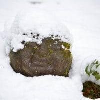 雪にうもれて