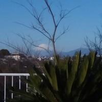 朝一番、富士山を見れるのは嬉しいな