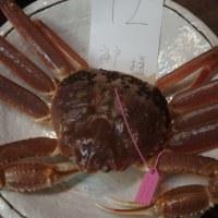 蟹を食べたよ