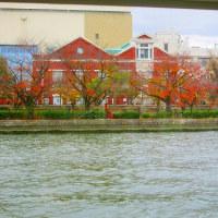 11月23日(水) なにわリヴァークルージング
