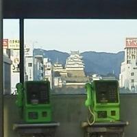 ここから姫路城が見えます。