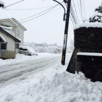 大雪警報ー!