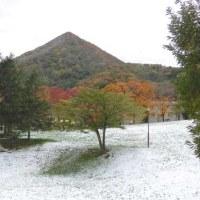 2016年の初雪です